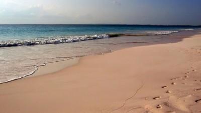 Onmisbare items op het strand